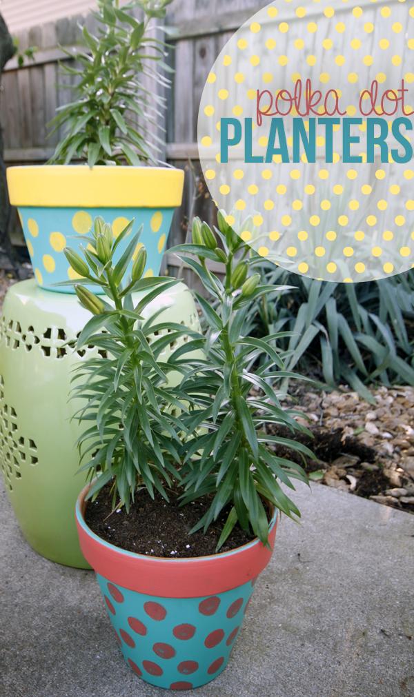 polka dot planters