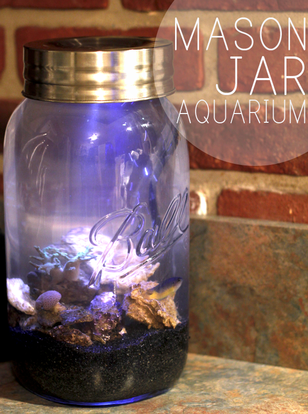 DIY MASON JAR REEF
