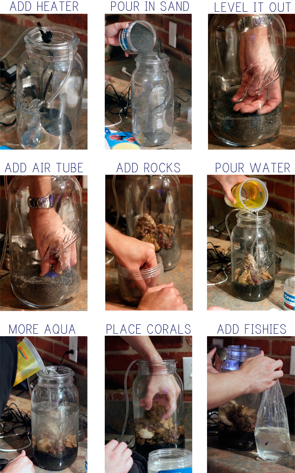 INSTRUCTIONS SO MAKE A MASON JAR AQUARIUM