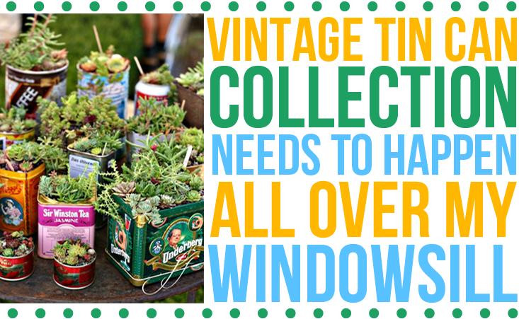 apartment-therapy-tin-can-windowsill-garden