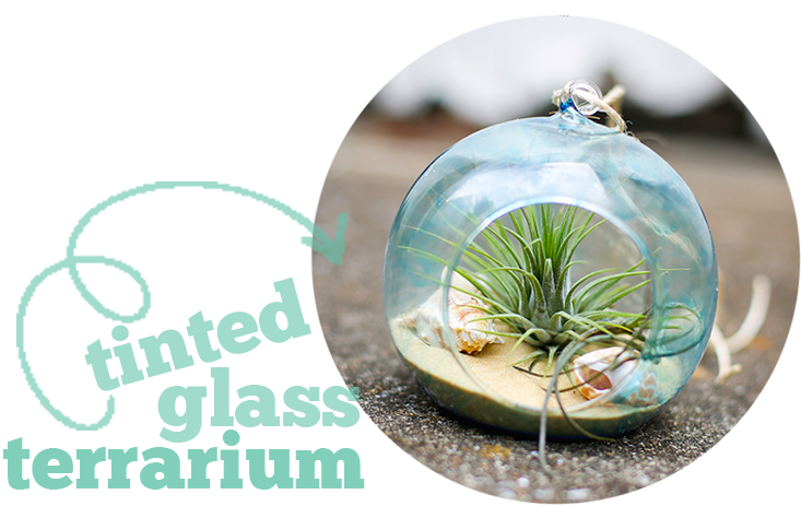 henry-happened-diy-tinted-glass-terrarium